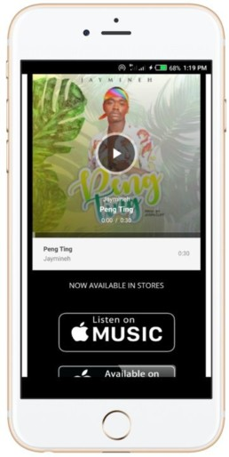 music promotion screen shot of peng ting