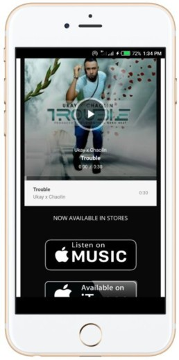 music promotion screen shot of Trouble